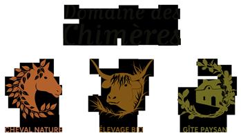 Domaine des Chimères – Séjour équestre & équitation, Gîte dans le Morbihan Logo